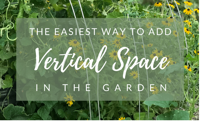 The Easiest Way to Add Vertical Space in the Garden #verticalgardening #gardenhack #gardening