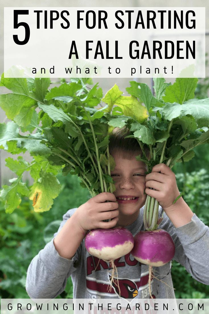 5 Tips for Starting a Fall Garden - How to start a fall garden - What to plant in a fall garden #fallgarden #gardening