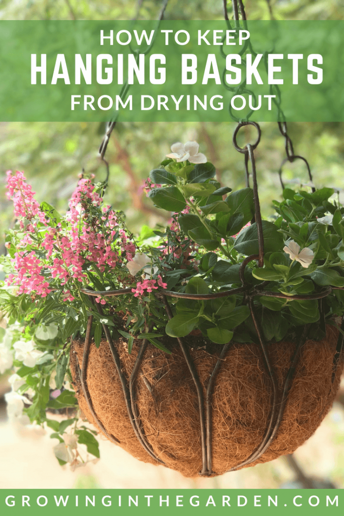 How to keep hanging baskets from drying out.