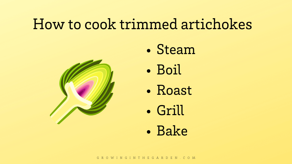 How to cook an artichoke infographic
