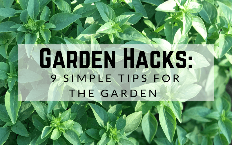 Garden Hacks: 9 Simple Tips for the Garden #gardening #howtogarden #gardenhacks