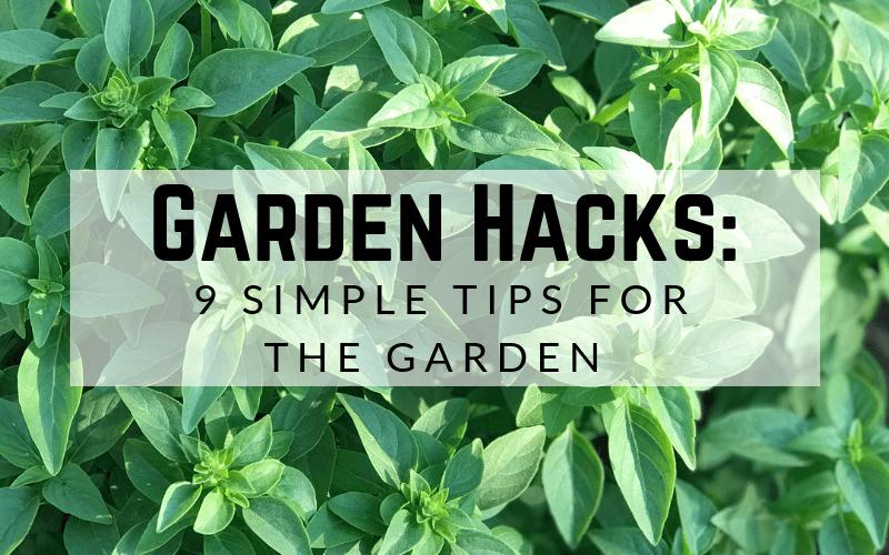 Garden Hacks: 9 Simple Tips for the Garden #gardening #howtogarden #gardenhacks