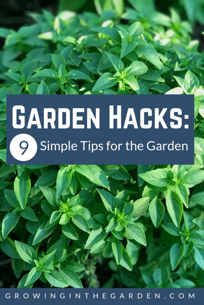 garden hacks 9 simple tips for the garden - Garden Hacks