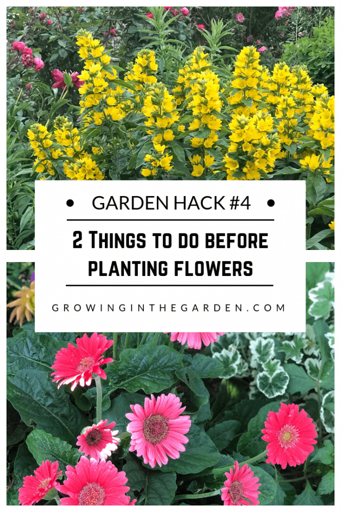 Gardening Hacks: 9 Simple Tips for the Garden #gardenhack #gardentips #howtogarden 2 Things to do before planting flowers