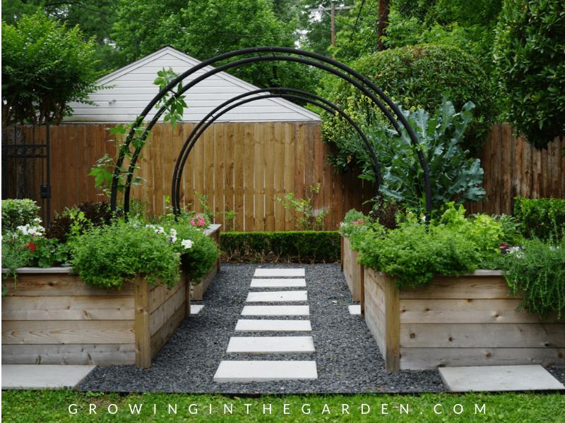 Inspiring Gardener: Nicole Burke of Rooted Garden #gardeninspiriation #whyilandscape #rootedgarden #gardener