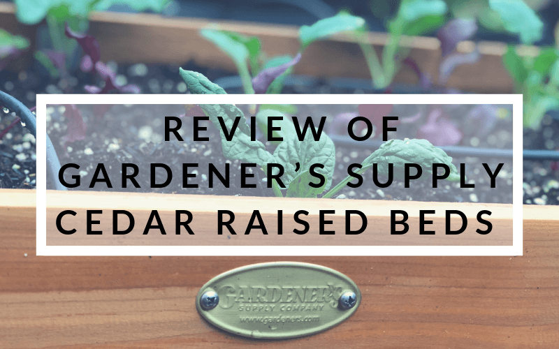 Review of Gardener's Supply Cedar Raised Beds #raisedbedgardening #containergardening #gardeners