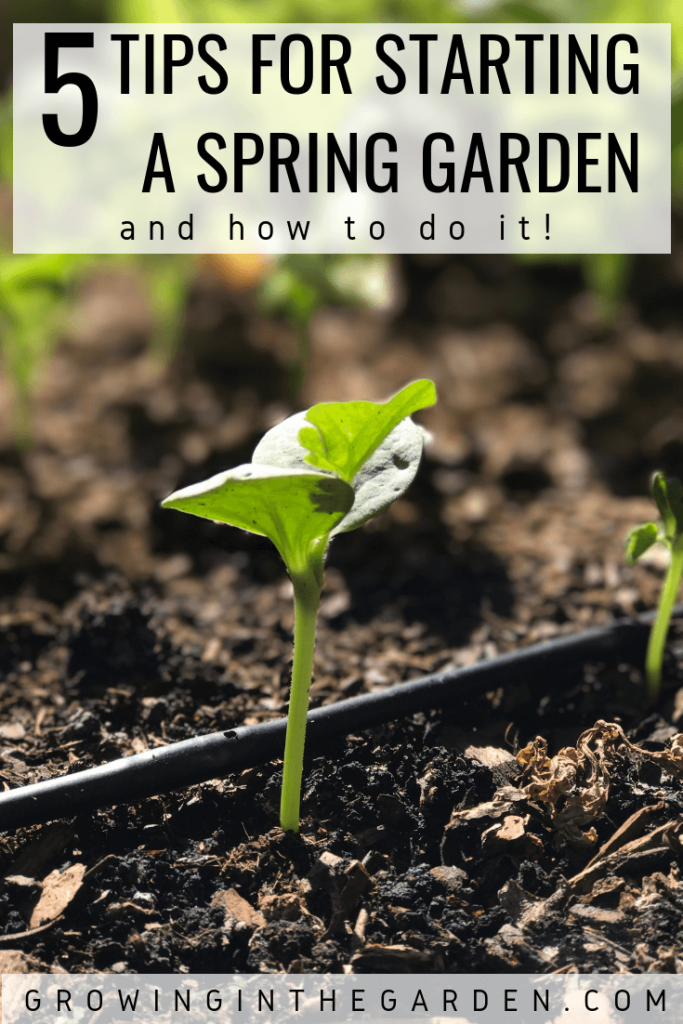 Spring Garden Checklist - 5 Tips for Spring Planting - Tidy up your garden - get ready for spring planting #garden #springgarden #tidyup