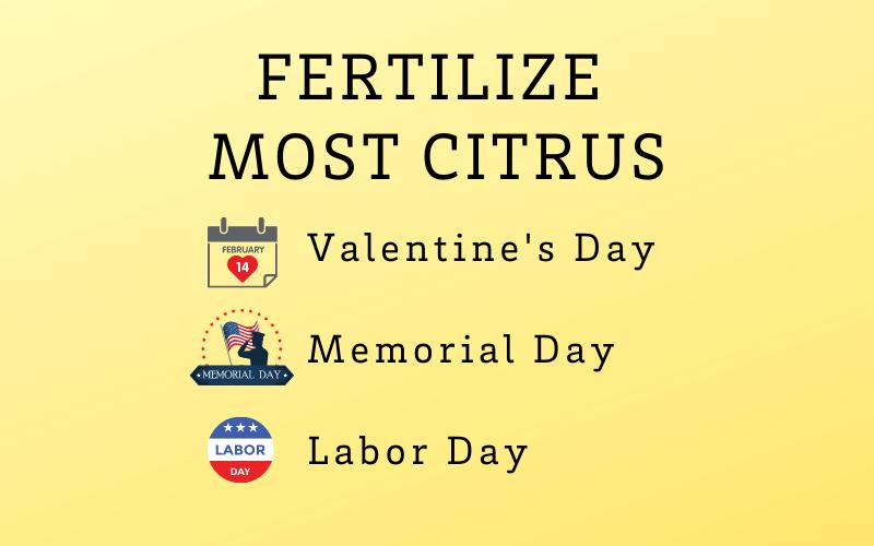 Citrus Fertilizing chart