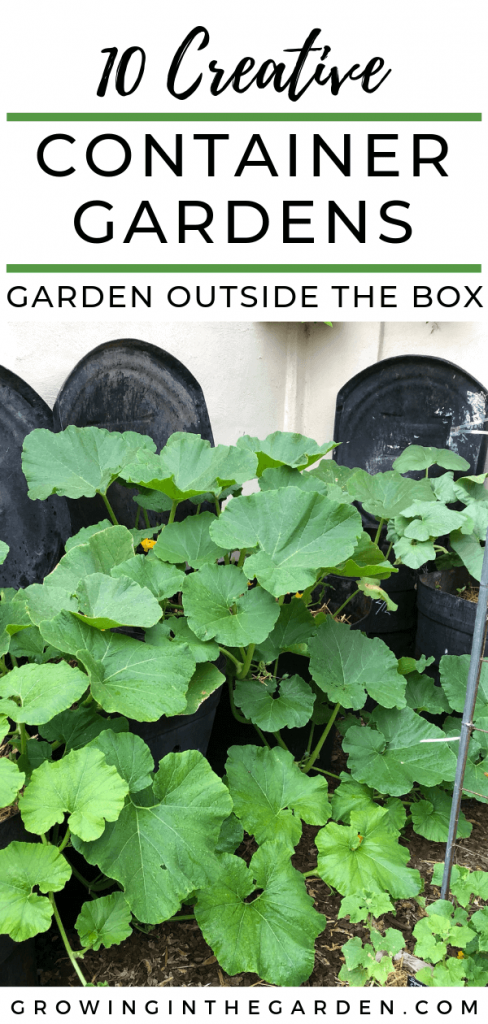GARDEN OUTSIDE THE BOX – CREATIVE CONTAINER GARDENING IDEAS