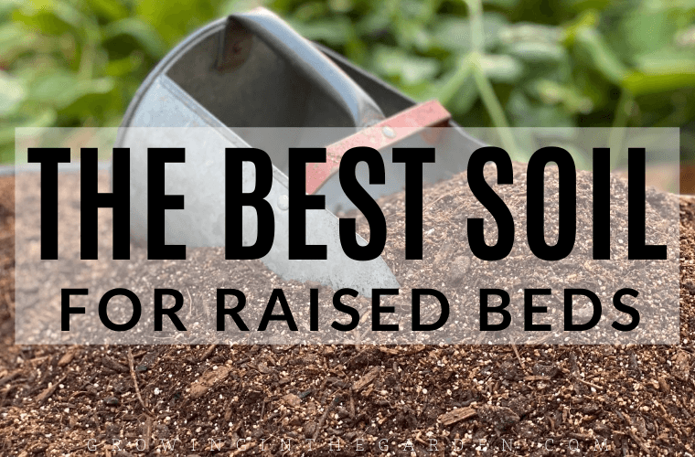 The Best Soil for Raised Bed Gardens
