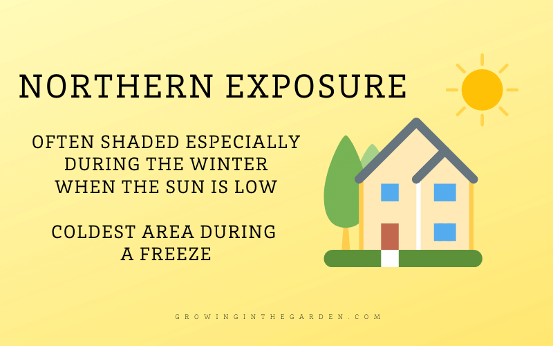 Northern Exposure Shade Definition and Diagram