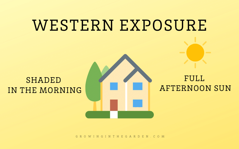 Western Exposure Shade Definition and Diagram