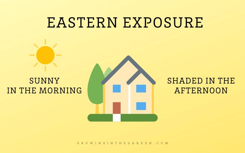 Eastern Exposure Shade Definition and Diagram