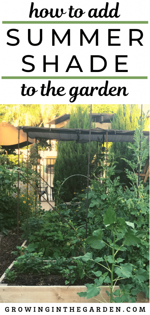 How to create shade in the garden / Add shade to a hot summer garden