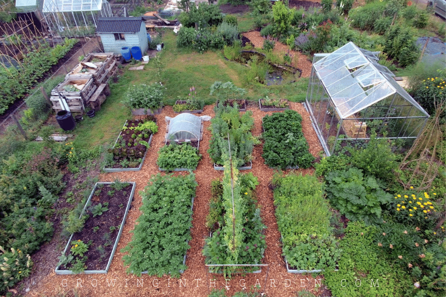 Inspiring Gardener Vera Greutink - Edible Paradise