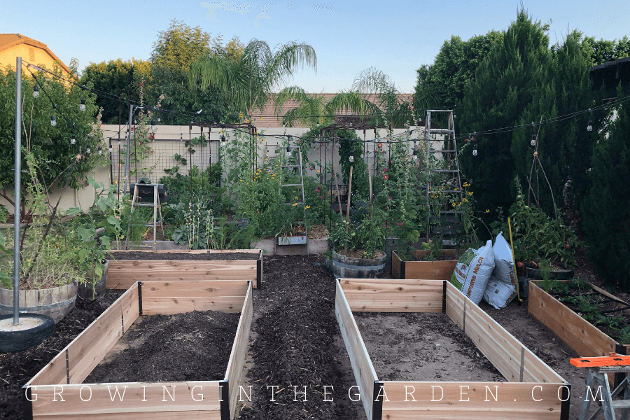 Raised-bed garden design tips