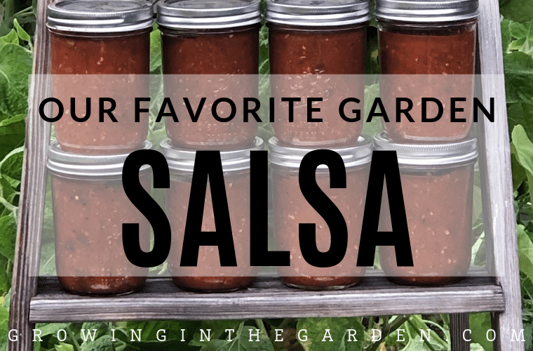 Our Favorite Garden Salsa Recipe