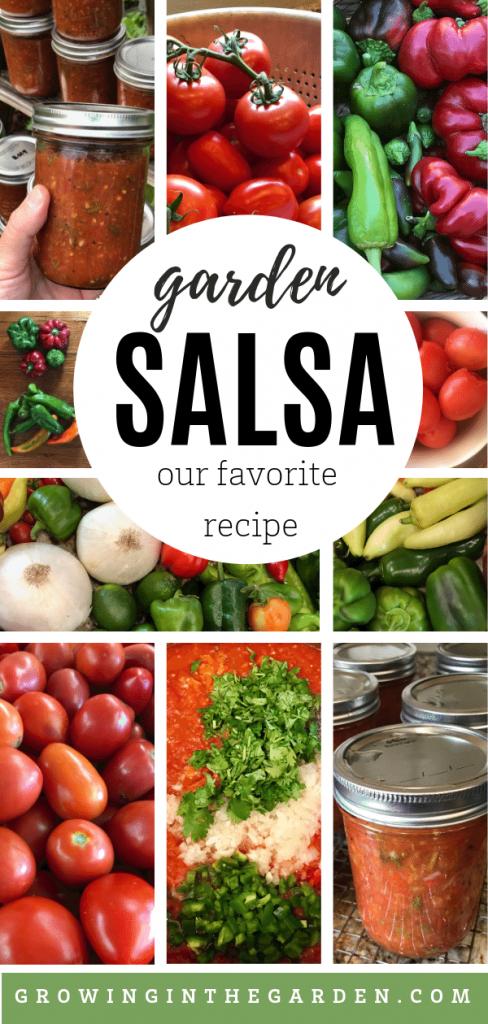 Our Favorite Garden Salsa Recipe