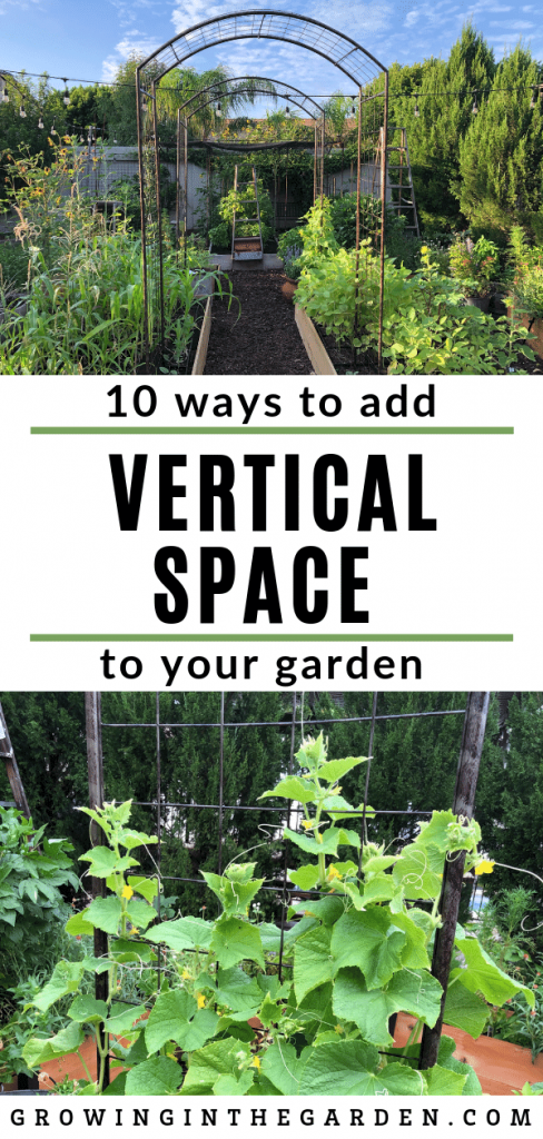 VERTICAL GARDENING IDEAS: HOW TO ADD VERTICAL SPACE TO YOUR GARDEN