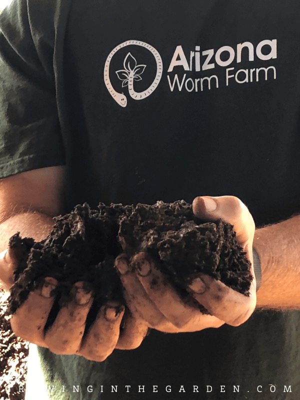 Compost from Arizona Worm Farm