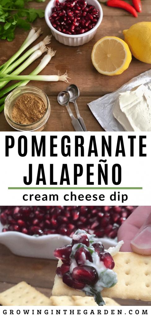 Pomegranate Jalapeño Cream Cheese Dip