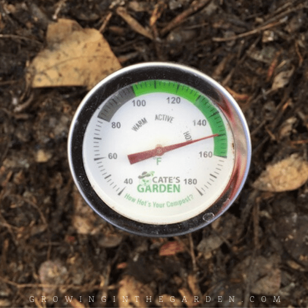 How to Compost: 10 Simple Steps for Composting Success