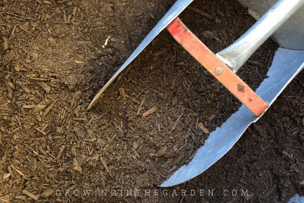 10 Biggest Vegetable Gardening Mistakes