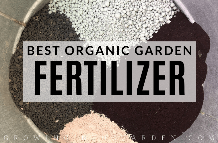 Best Organic Garden Fertilizer