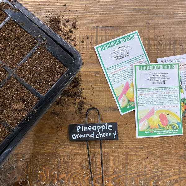 Garden Planning in 5 Simple Steps