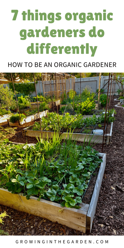 How to be an organic gardener