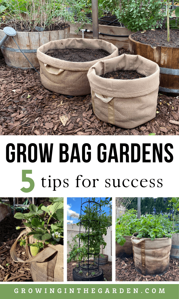 Gardening in Growbags: 5 Tips for SUCCESS