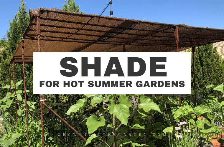 How to create shade in the garden