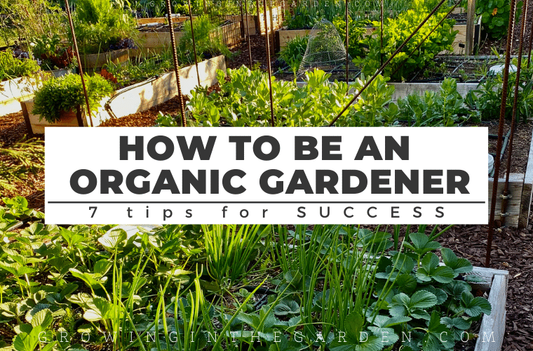 7 Things Organic Gardeners Do Differently