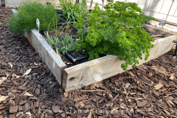 Garden beds should be at least 12-18 inches deep