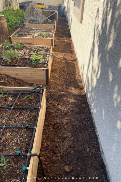 Sprinkler line going into beds, Garden Makeover: Before, During & After