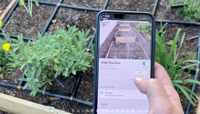 Rachio controller for garden drip line