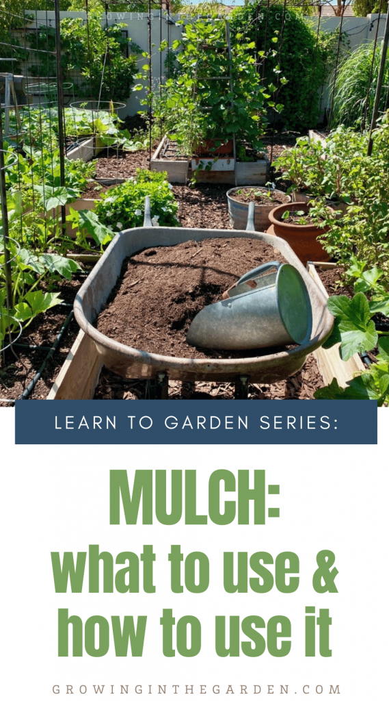 Mulching Your Garden: What to Use and How to Use it