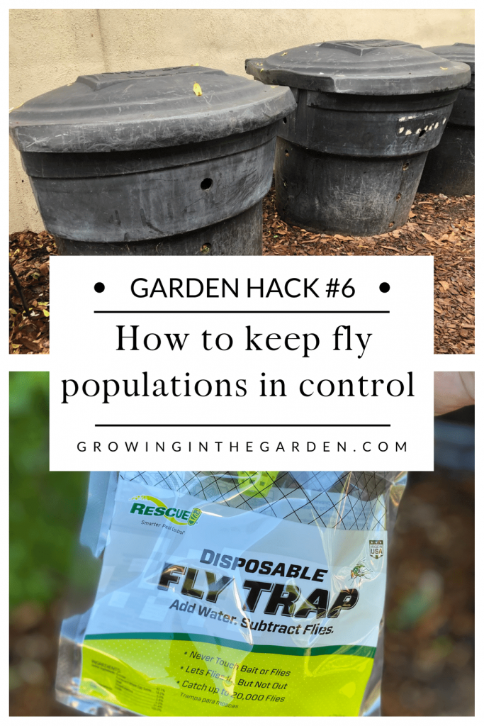 Pest Control Hack #6: How to keep fly populations in control